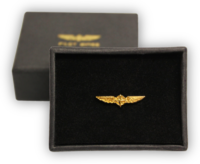 Pilot Wings klein Gold