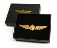 Pilot Wings Big Gold